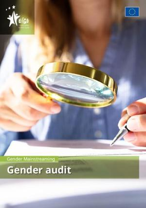 Gender mainstreaming: gender audit