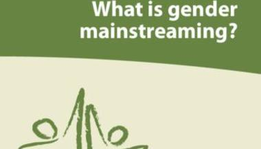 What is gender mainstreaming?